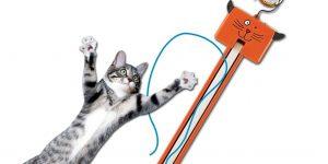 Your cat will go nuts for this weird door gadget