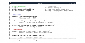 This ugly operating system is actually a killer CV