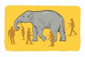 Elephant Design: Trailblazer in Design Consulting